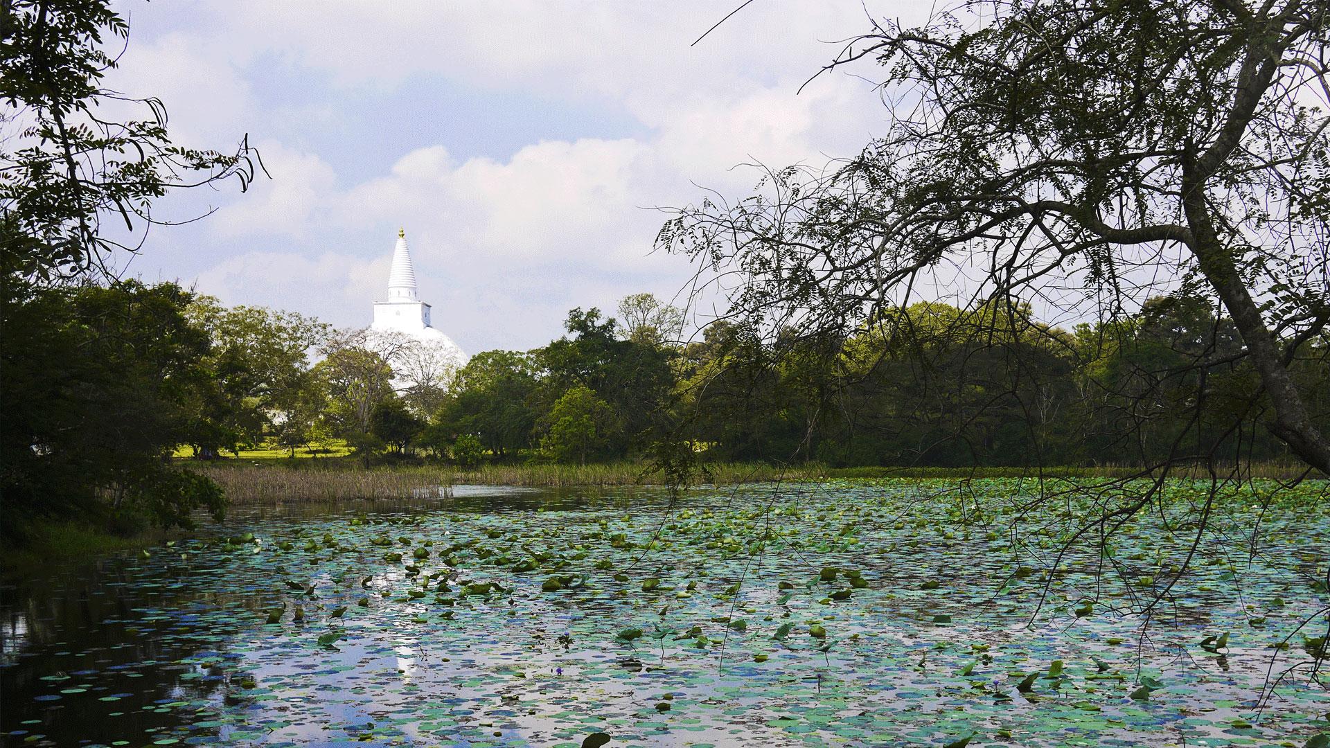 anuradhapura-distinations.lk