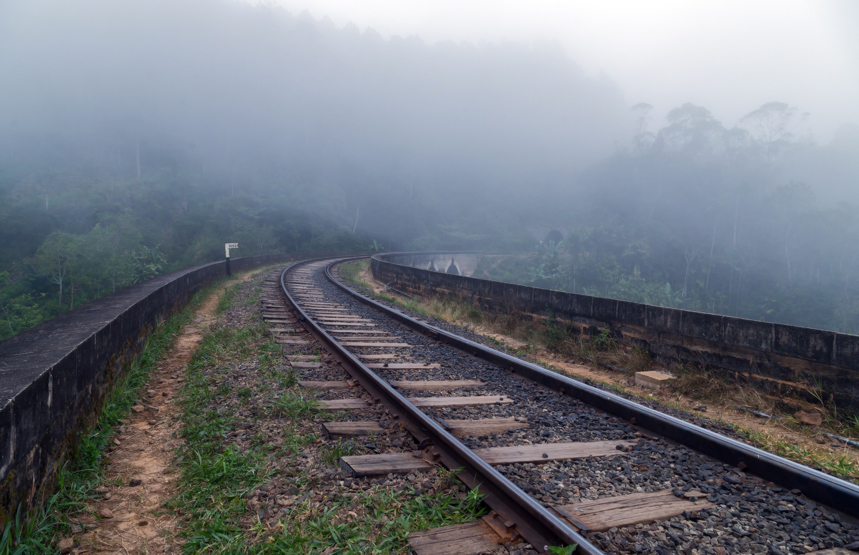 Railway forest in mist, Ella, Sri Lanka