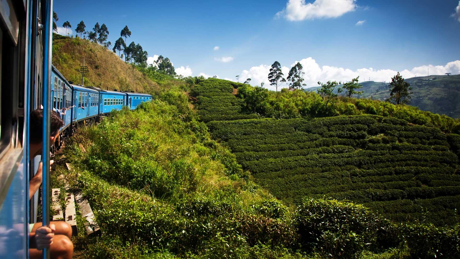 Train-from-Nuwara-Eliya-to-Kandy