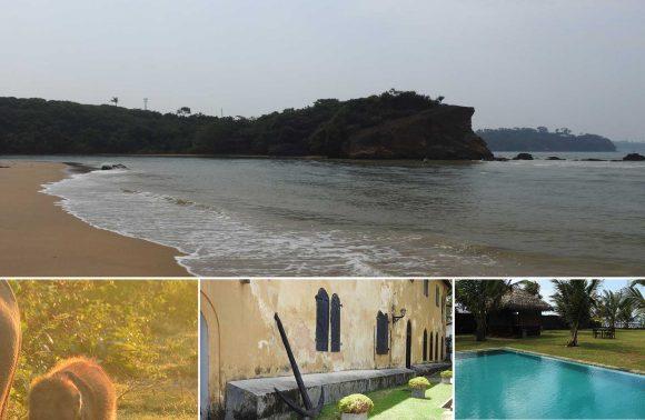 Short Tours – Galle, Mirissa, Udawalawa 3N / 4D
