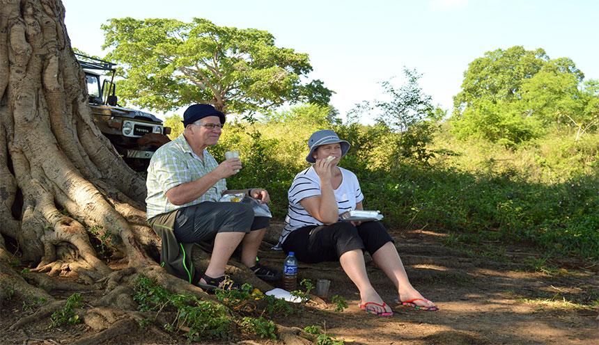 udawalawa_park_safari